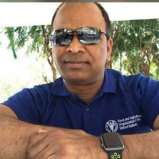 VenkatDheeravath avatar
